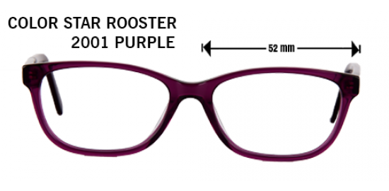 COLOR STAR ROOSTER 2001 PURPLE